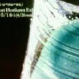 200904071551000